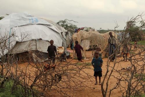 Dadaab Refugee camp, Kenya.