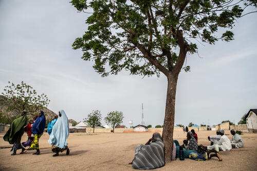 Surviving conflict in northeast Nigeria