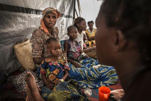 Cholera intervention in South Kivu