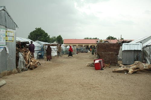 MSF activities continue in Gwoza, Borno State