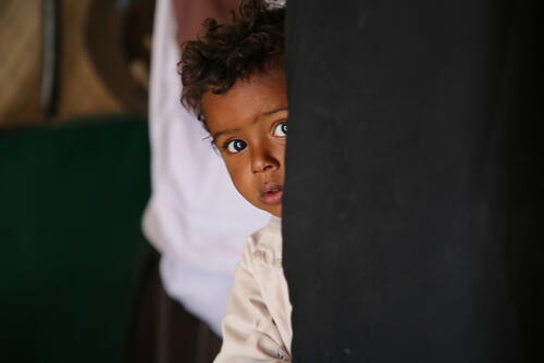 Marib: Health needs grow in what was considered the safe haven of Yemen