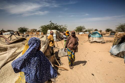 الأزمة الإنسانية في النيجر