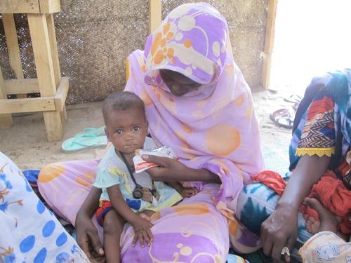 Chad - Malaria emergency in Massakory