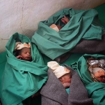 Four twins babies at the Bassikounou hospital