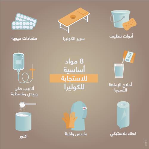 8 key items for a cholera response AR