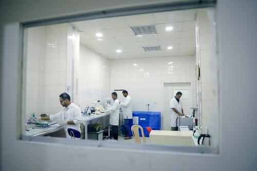 MSF bio lab at MSF's Aden hospital