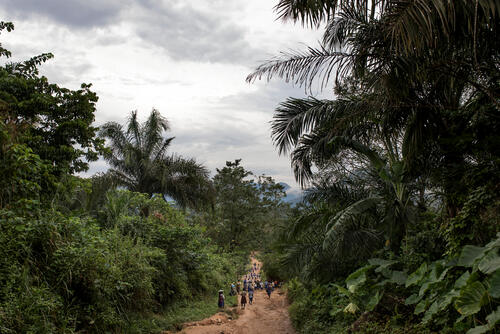 General view outside Amana village, Cross River State