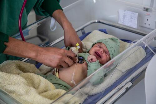Neonatal care in Khamer hospital, Amran governorate