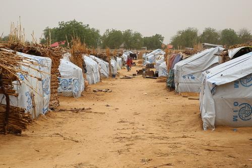 Displaced in Borno state