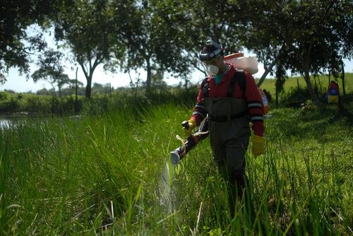 Venezuela: How studying mosquito behavior help bring down malaria in Sucre state