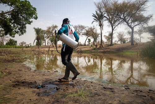 Niger: Treating water in communities to prevent malaria