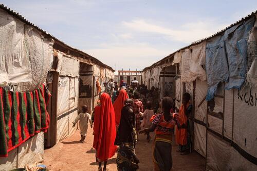 Borno State – Pulka