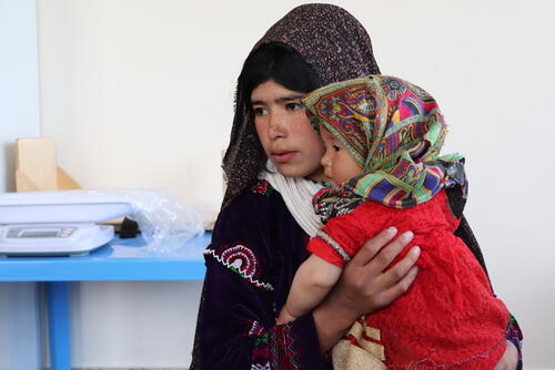 Families suffering from displacement in Herat, Afghanistan