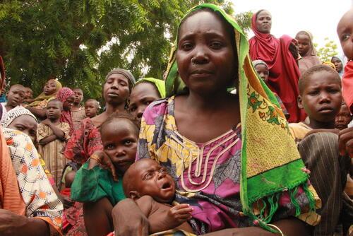 أنشطة أطباء بلا حدود في نيجيريا