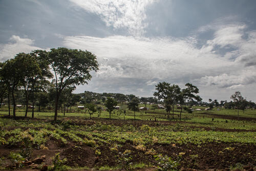 Tanzania, Nduta - November-2018