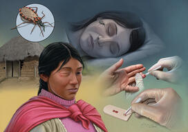 Neglected Tropical Diseases (Report)