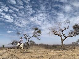 Providing Healthcare to Neglected Population in Jebel Marra - Darfur Region